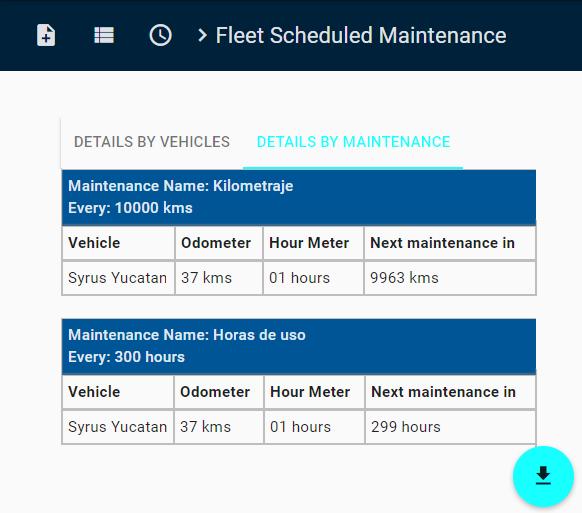 Maintenance Report